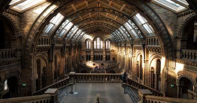 stampa 3D al museo, scienze naturali, Londra